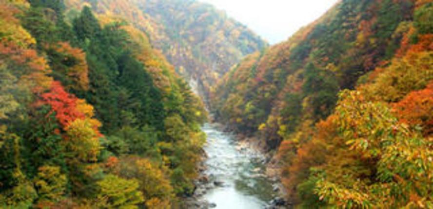 老神温泉渓谷の紅葉