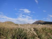 阿蘇登山道の景色(秋)①
