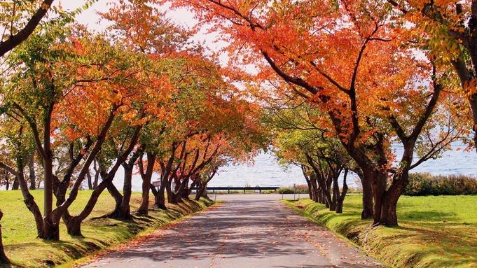 【ひとり旅×部屋食】秋冬限定!お気軽に温泉と旬の料理を満喫する旅へ<▼カジュアル御膳>
