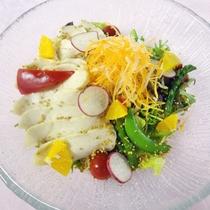 *【選べる夕食メイン】青森県産鶏肉のパワーサラダ