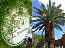 大きな椰子の木が目目印です。