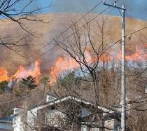 毎年2月第2日曜に行われる大室山山焼き・伊豆高原の春を告げる壮大な行事です。