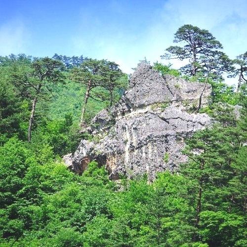 「骨寺村荘園」として国史跡に指定されている[山王窟]