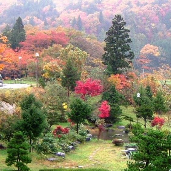 [秋]庭園