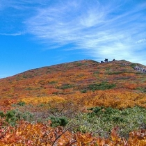 ☆皆さん元気いっぱいに栗駒山の大自然を満喫しています♪