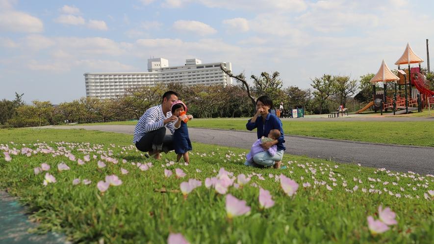 ホテル隣接の親子で遊べる広大な残波岬公園