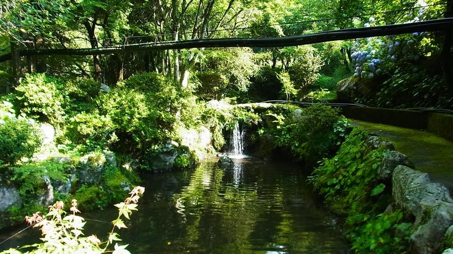 *【釣り堀】大自然に溶け込むように広がる専用釣り堀。