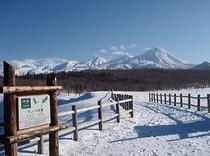 冬のフレペ2