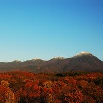 【紅葉】知床の秋もオススメ!真っ赤に染まった木々たちを見に行きませんか?