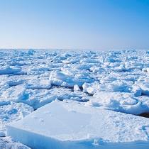 【流氷】まるで雲のような光景。どこまでも真っ白な世界に思わずため息が———