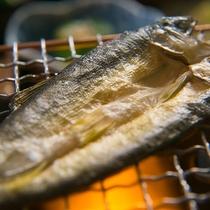 【鮎の一夜干し】そのままでも香り高い那珂川の鮎を、一夜干しにすることでさらに香り高く仕上げました。
