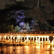 【嵐山花灯路】冬の澄んだ空気に浮かぶ、幻想的なライトアップをお楽しみください。