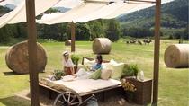 【ファーム星野】牧草ベッド