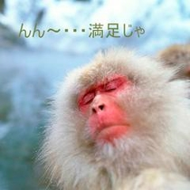 ◇瞑想おサルさん「う〜ん満足!」