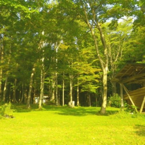 *【周辺】苗名滝までの遊歩道が整備されています。