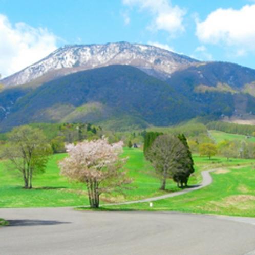 *【周辺】遅い春の訪れを告げる黒姫高原の桜。