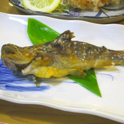 *【夕食一例】イワナの塩焼き。