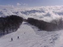 近隣の杉の原スキー場