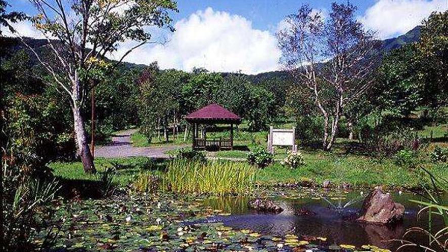 四季それぞれに様々な表情を見せてくれる鑑賞池