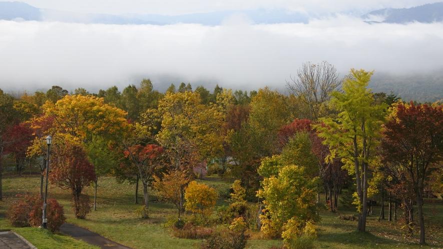 ホテルから望む秋の雲海