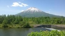 夏の羊蹄山  富士山によく似た整った姿から、蝦夷富士とも称されています