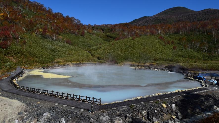 大湯沼 湯本温泉の源泉。激しい噴気が特徴。