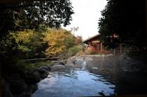 椎葉山荘「しいばの湯」:入浴無料(送迎付き)
