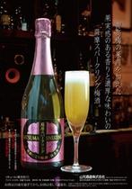 ■薩摩焼酎スパークリング梅酒