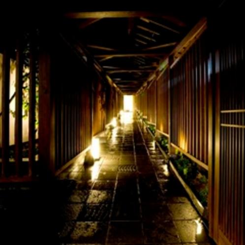 玄関前アプローチ 夜