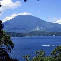 夏の野尻湖と緑