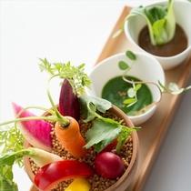 2016料理イメージ野菜