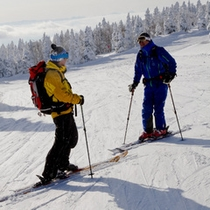 【冬】ゲレンデを楽しむスキーヤー