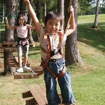 【ツリートレッキング】小さなお子様でも体験できる高さ90cmのラインもあるよ!