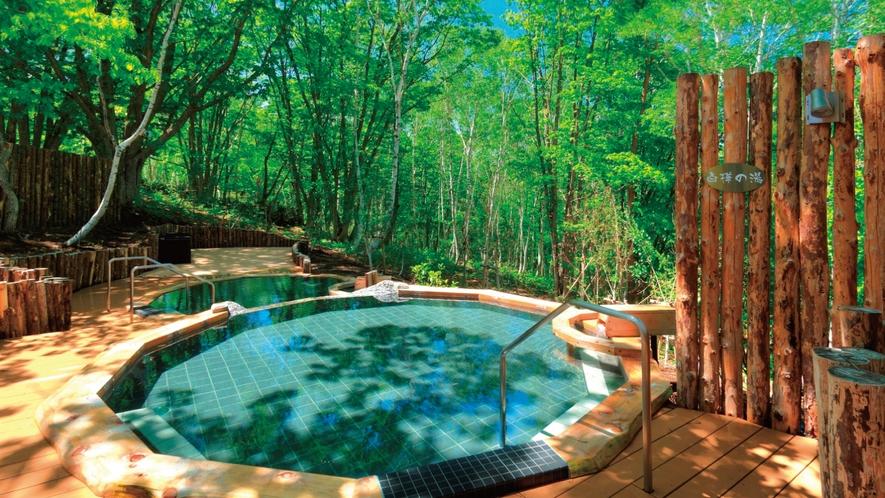 白樺の湯 春~夏 白樺の湯 春~夏 リラックス効果(森林浴)も楽しめる温泉