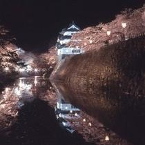 弘前公園夜桜(北の郭から天守)