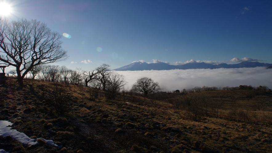 【雲海】条件が合えば雲海が見れることも