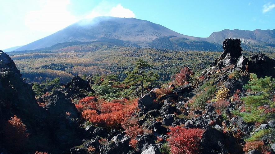 【鬼押出し園】ホテルより車で約50分。浅間山噴火によって生まれた溶岩の芸術です