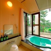 デラックスタイプ風呂(八丈島 一例)