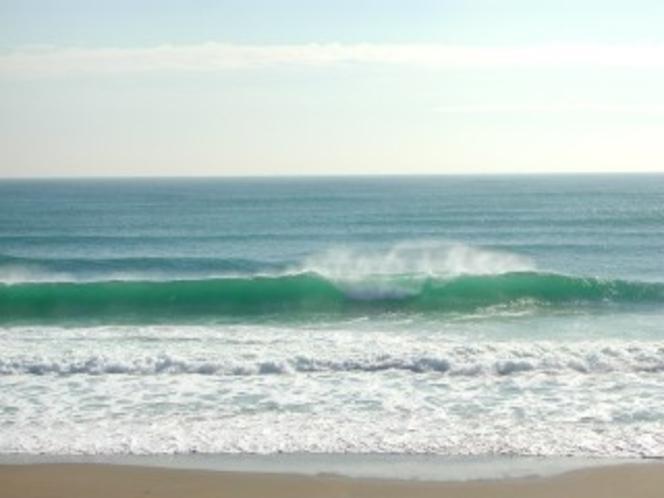 どんな波に出会えるか