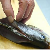 食べたい料理や今の旬の魚介を知りたい場合はお気軽にご連絡下さい