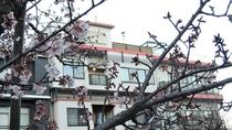 *外観/梅の花が咲く、早春の熱海。8つの温泉が冷えた身体を温めてくれます。