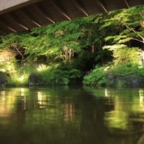 【雫石高倉温泉】夏は新緑がお楽しみいただけます。