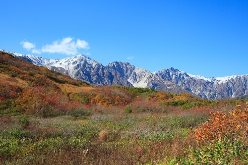 紅葉の白馬三山