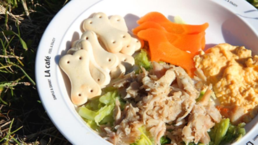 お食事|ペット専用「金目鯛のほぐし身プレート」