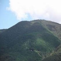 津黒山(夏)