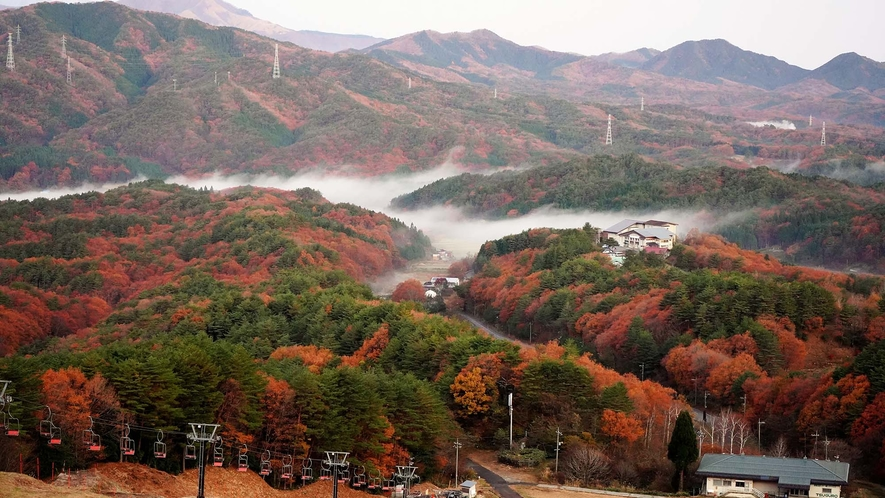 ・晩秋の津黒の森と高原荘★