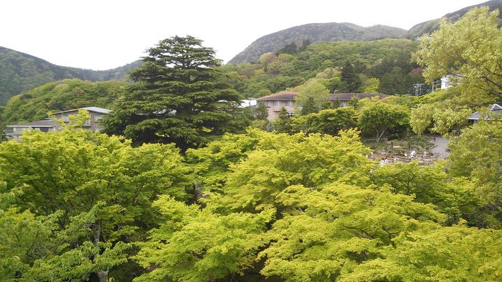 大浴場からの景色(初夏・5月)