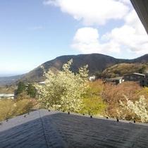 *4Fからの風景(春)