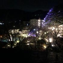 *強羅公園 ~箱根強羅公園「スプリングナイトガーデン」~不思議な夜の演奏会