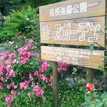 *箱根強羅公園のローズガーデン入口